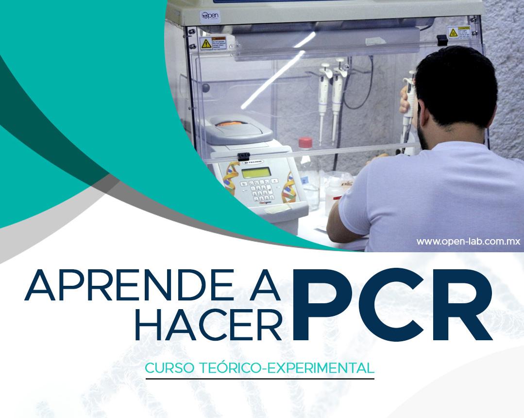 Aprende a hacer PCR