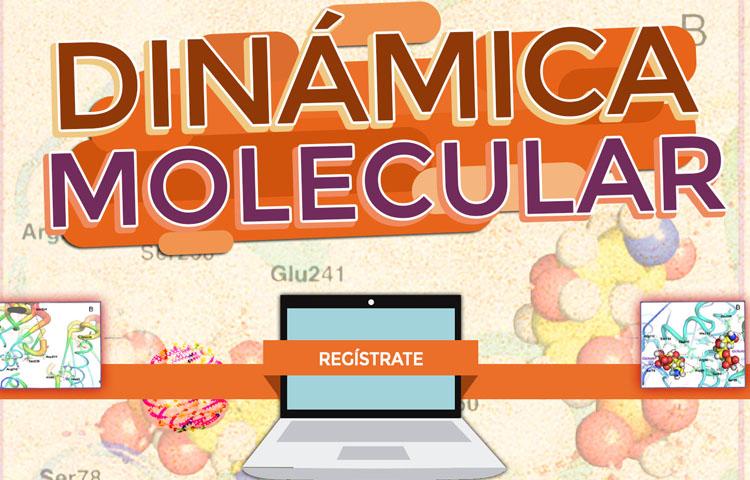 Dinámica Molecular