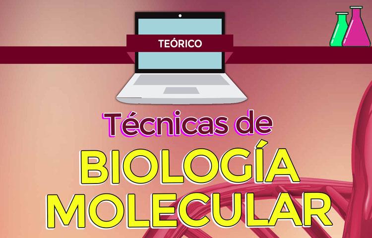 Técnicas de biología molecular